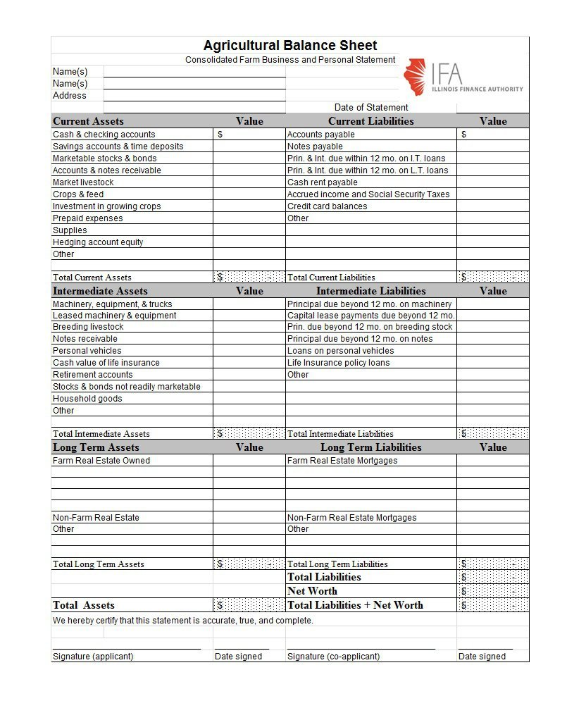 Sheet Template sample of professional resignation letter agenda – Balance Sheet Format Download