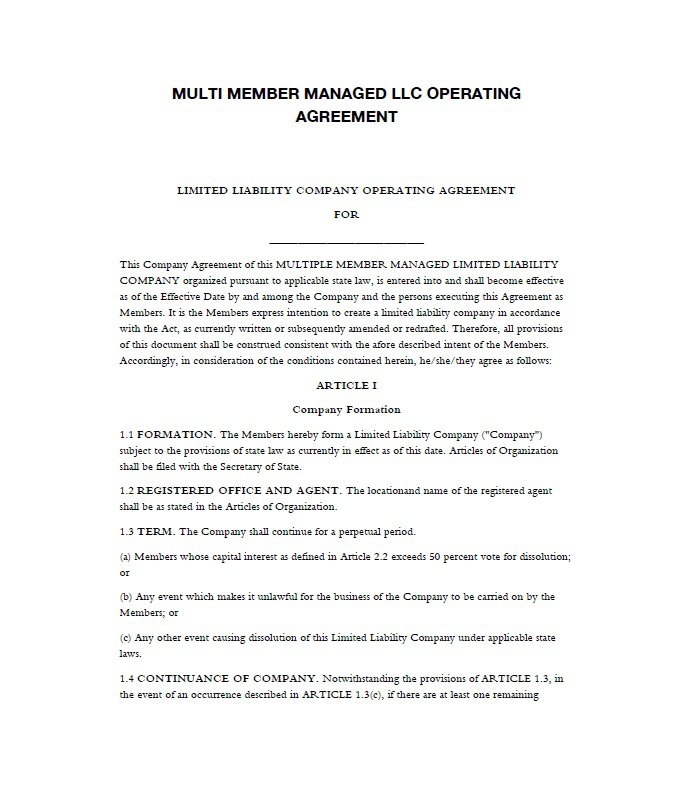 llc-operating-agreement-template-04