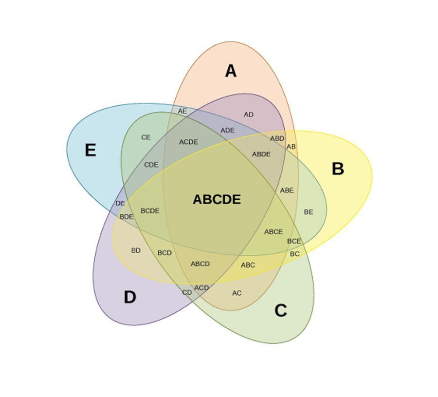 venn-diagram-template-19