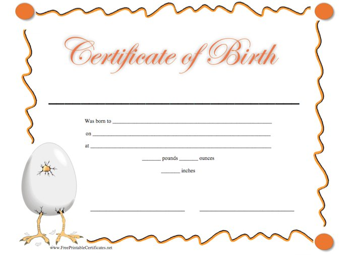 15 Birth Certificate Templates Word PDF Free Template Downloads