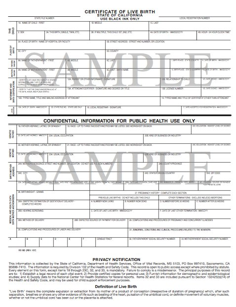 sample-birth-certificate-template-12